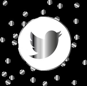 L'utilisation de Twitter comme outil de veille performant